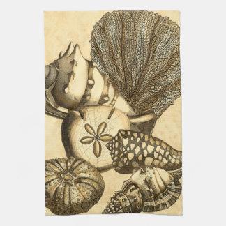 中立貝および珊瑚のコレクション キッチンタオル