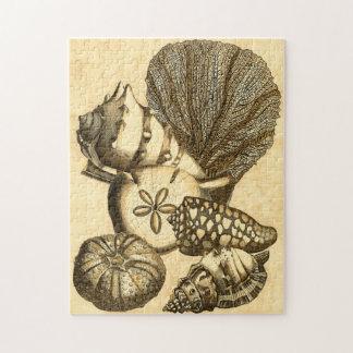 中立貝および珊瑚のコレクション ジグソーパズル