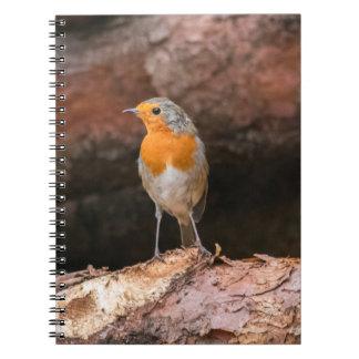 丸太に坐っているロビンの写真 ノートブック