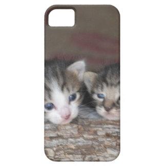 丸太の2匹の子ネコ iPhone SE/5/5s ケース