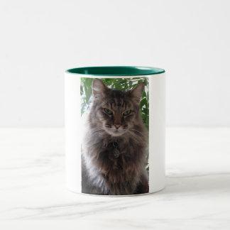 主要なあらいぐま猫のマグ ツートーンマグカップ