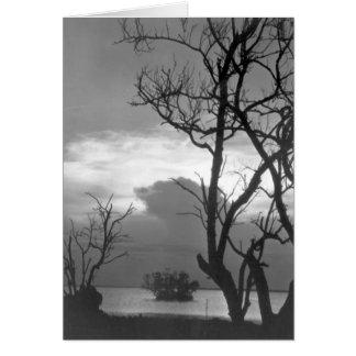 主Largo、フロリダ1962年の日没 カード