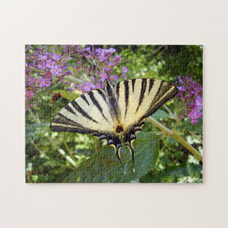 乏しいアゲハチョウの蝶写真のパズル ジグソーパズル