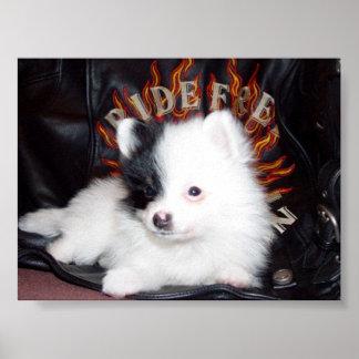 乗車の自由なlilの子犬 ポスター