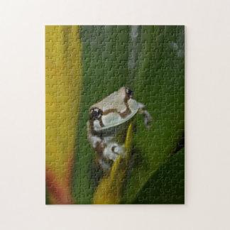 乳白色のカエルのパズル ジグソーパズル