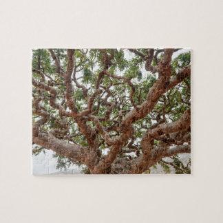 乳香の木、Homhilのプラトー、ソコトラ島島 ジグソーパズル