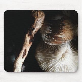 乾燥されたきのこ珊瑚、貝、流木 マウスパッド