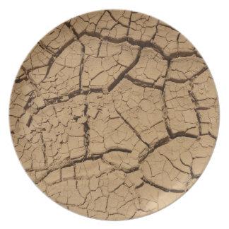 乾燥した土 プレート