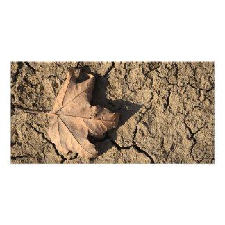 乾燥した汚れた土-秋の写真撮影の死んだ葉 カスタムフォトカード