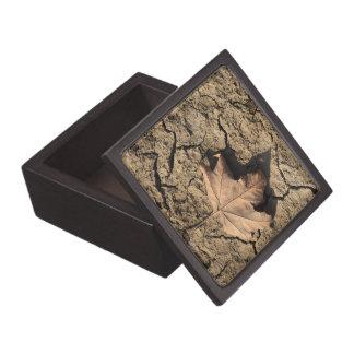 乾燥した汚れた土-秋の写真撮影の死んだ葉 ギフトボックス