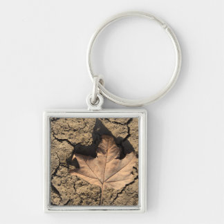 乾燥した汚れた土-秋の写真撮影の死んだ葉 シルバーカラー正方形キーホルダー