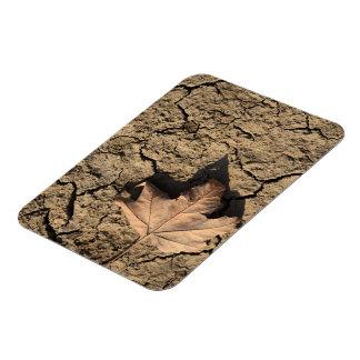 乾燥した汚れた土-秋の写真撮影の死んだ葉 フレックスマグネット