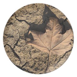 乾燥した汚れた土-秋の写真撮影の死んだ葉 プレート