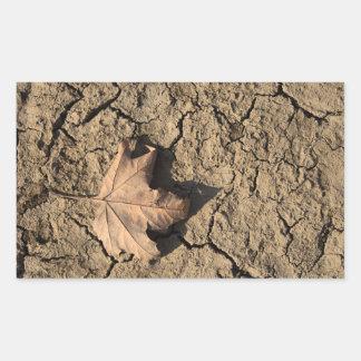 乾燥した汚れた土-秋の写真撮影の死んだ葉 長方形シール