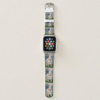 予算Cerberus Apple Watchバンド