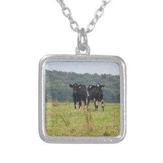 二重牛Troube シルバープレートネックレス