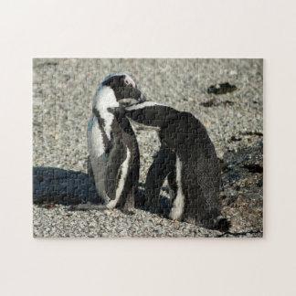 互いに手入れをしているアフリカのペンギン ジグソーパズル