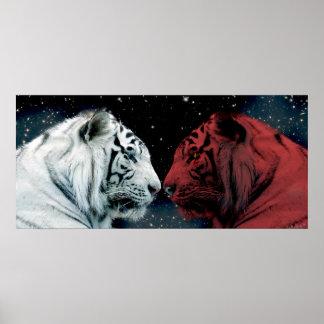 互いに直面している赤と白のトラ ポスター