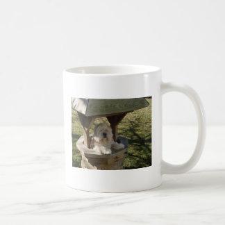井戸のラサApso コーヒーマグカップ