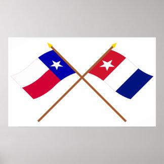 交差させたテキサス州およびHarrisburgのボランティアの旗 ポスター