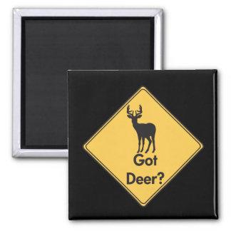 交通標識の得られたシカか。 磁石