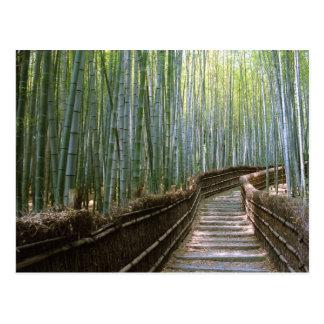 京都のタケ森林 ポストカード