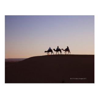 人々の乗車のラクダ、モロッコ はがき