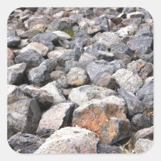 人のブッシュの設定は造岩パターンを作りました スクエアシール