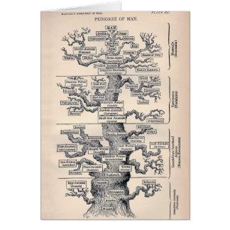 人の/系統生命の樹 グリーティングカード