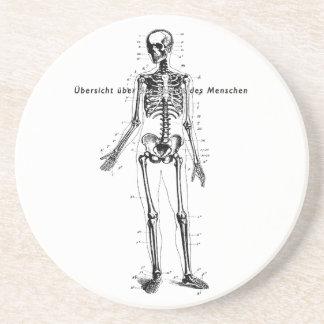 人体の図表のコースター ドリンクコースター