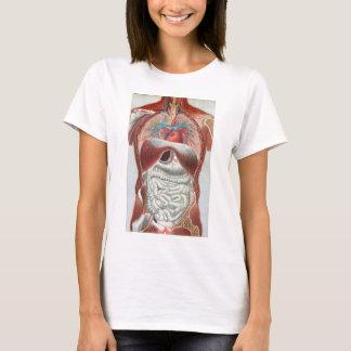 人体の解剖学 Tシャツ