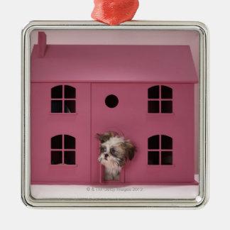 人形の家から凝視している子犬 メタルオーナメント