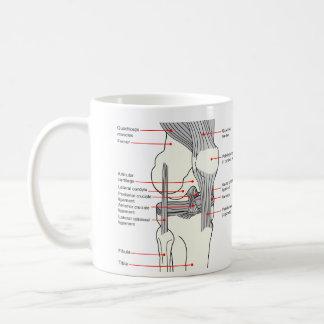 人権の膝関節の解剖図表 コーヒーマグカップ