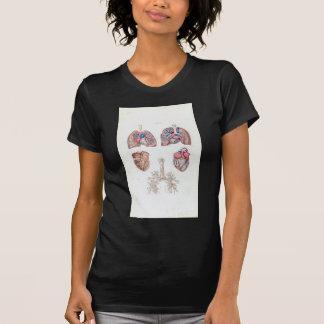人間のハートおよび肺のヴィンテージの解剖学 Tシャツ