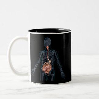 人間の消化系のレイアウト ツートーンマグカップ