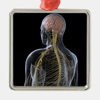 人間の神経系 メタルオーナメント