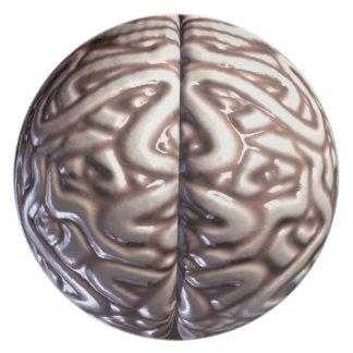 人間の脳のプレート プレート