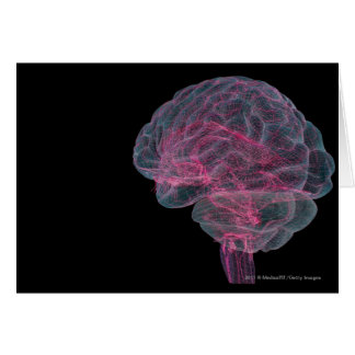 人間の脳の背面図 カード
