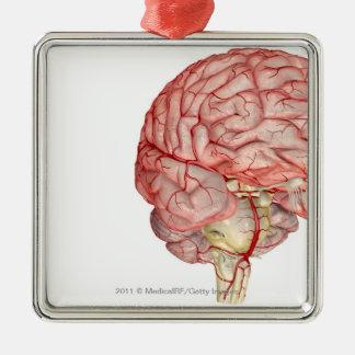 人間の脳のRealiticのレンダリング メタルオーナメント
