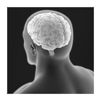 人間の脳2の概念的なイメージ キャンバスプリント