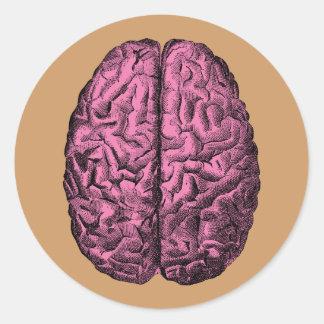 人間の解剖学の頭脳 ラウンドシール