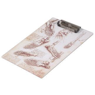 人間の解剖学のDa Vinci著骨組足骨 クリップボード
