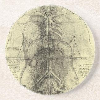 人間の解剖学、レオナルド・ダ・ヴィンチ著女性の胴 コースター