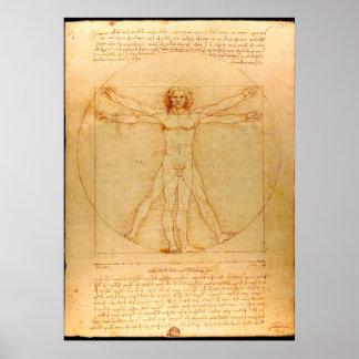 人間の解剖学、レオナルド・ダ・ヴィンチ著Vitruvianの人 ポスター