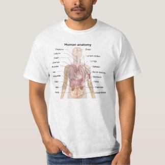 人間の解剖学 Tシャツ