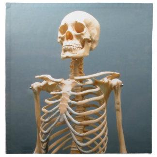人間の骨組 ナプキンクロス