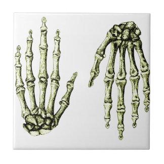 人間手の骨 タイル
