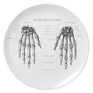 人間手の骨 プレート