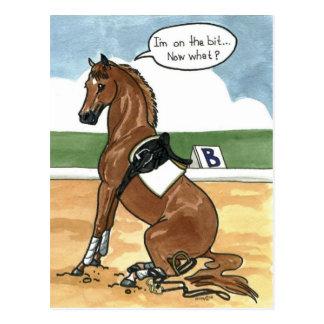 今ビットの馬の芸術何 ポストカード