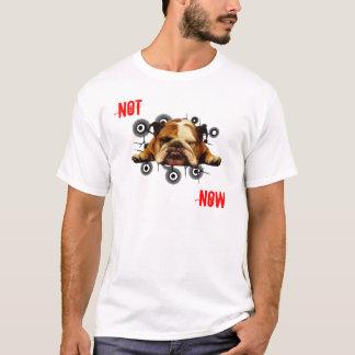 今 Tシャツ